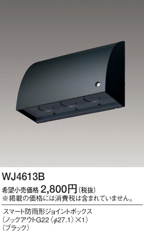 WJ4613B.jpg