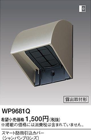 WP9681Q.jpg