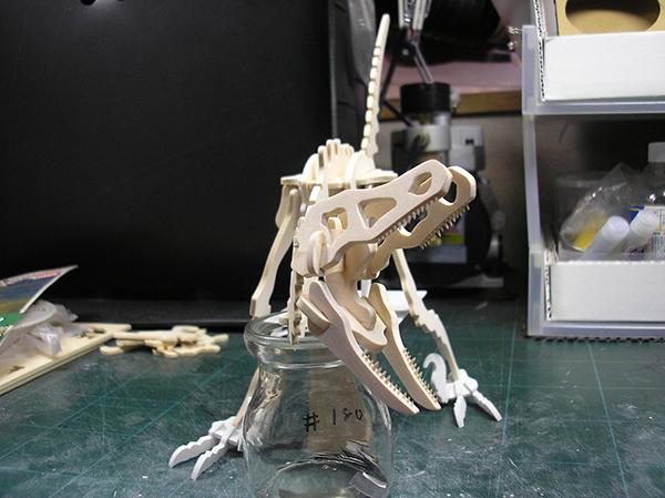 20190806 木製3Dパズル ラプトル 3