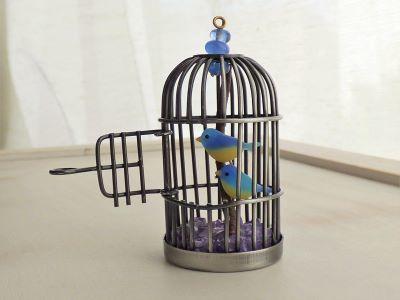 2羽の青い小鳥4