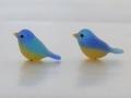 2羽の青い小鳥5