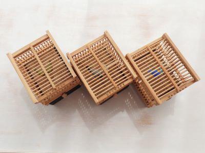 20190701竹籠