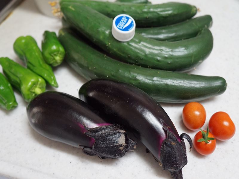 自家製の夏野菜