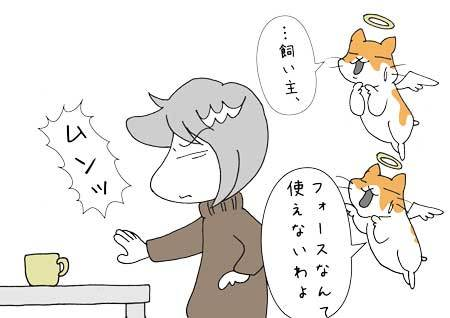 hatutiri4.jpg