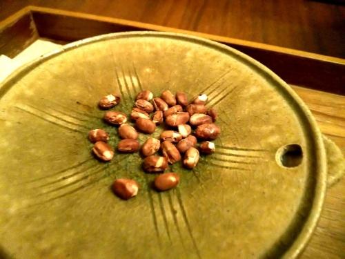 カフェ大阪茶会 (9)