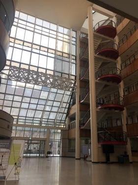 梨花女子大学。