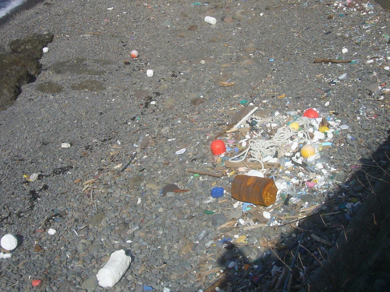 ゴミ海岸 R2.1.26
