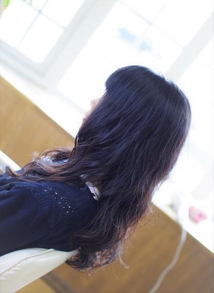 IMGP4609 (2)