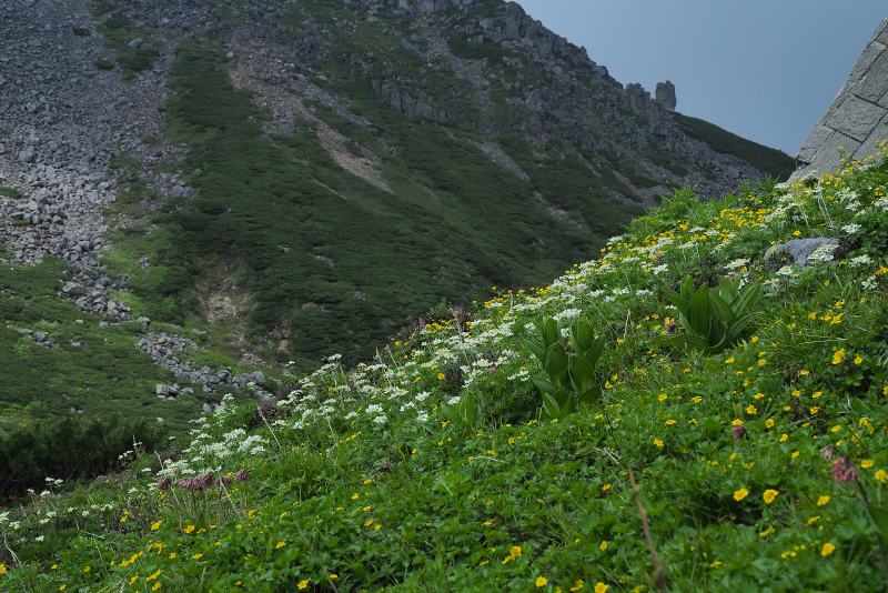 norikura010.jpg