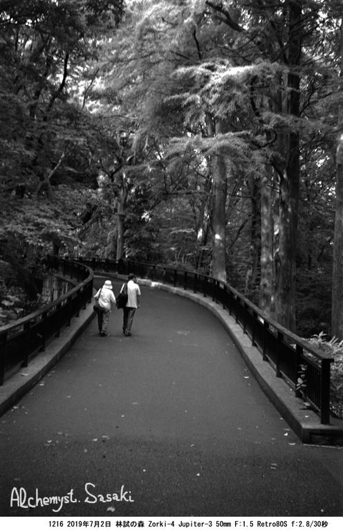 林試の森1216-7