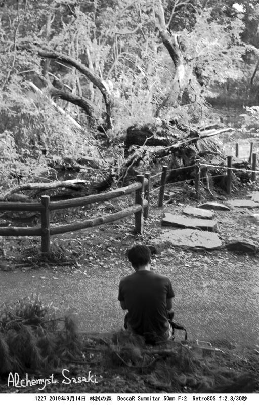 林試の森1227-4 Ⅱ