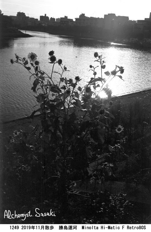 勝島運河1249-13