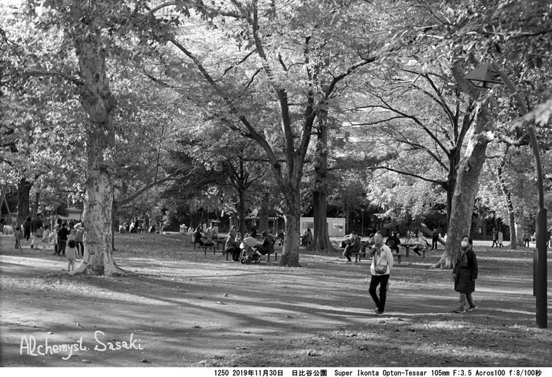 日比谷公園の秋1250-7