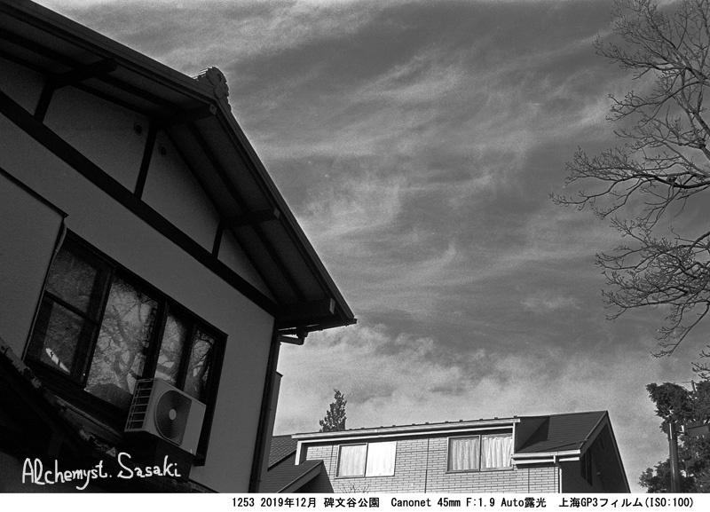 碑文谷公園1253-3