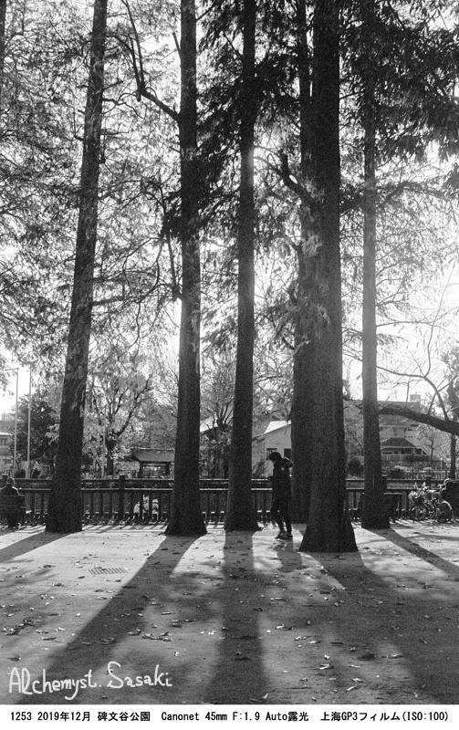 碑文谷公園1253-12