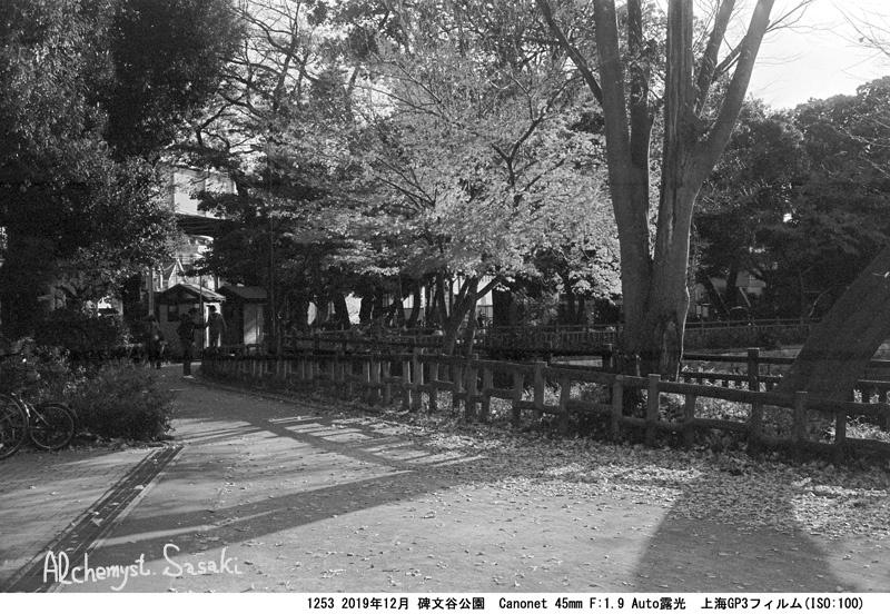 碑文谷公園1253-22