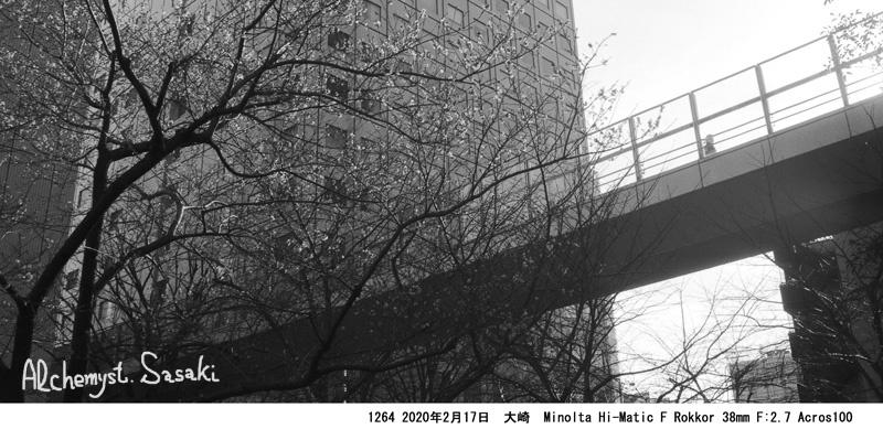大崎散歩1264-4