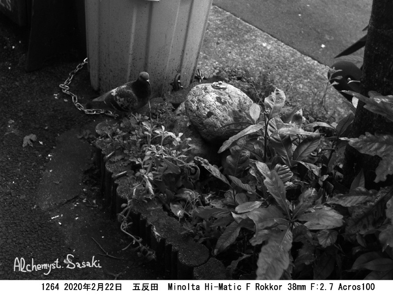 五反田1264-43a