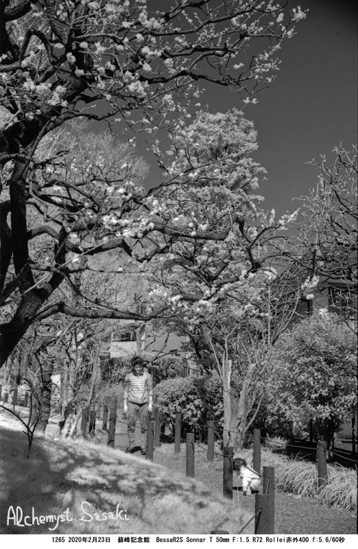 戸越から池上本門寺へ1265-13