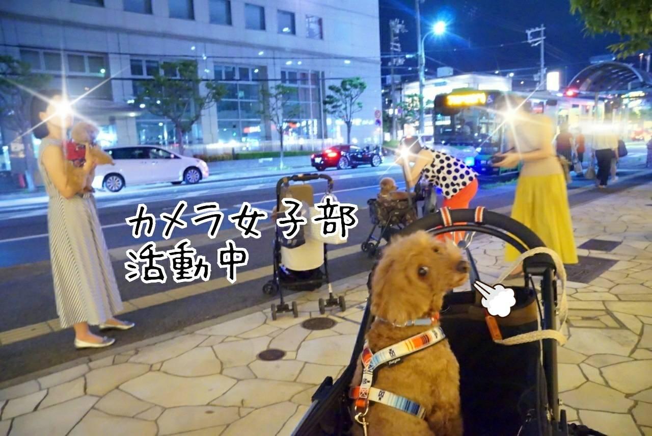 2019花火大会の帰り道14