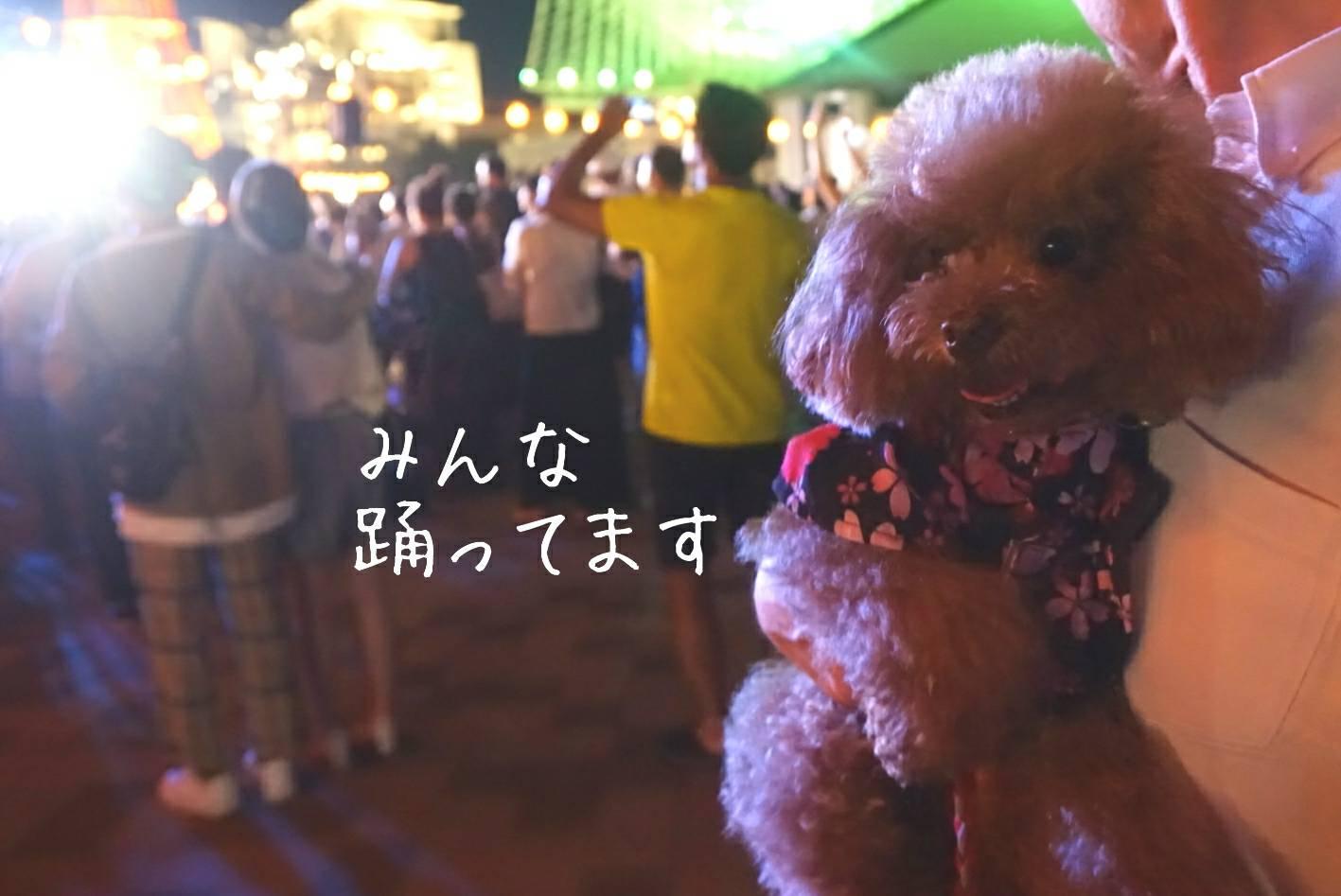 2019盆踊り大会34