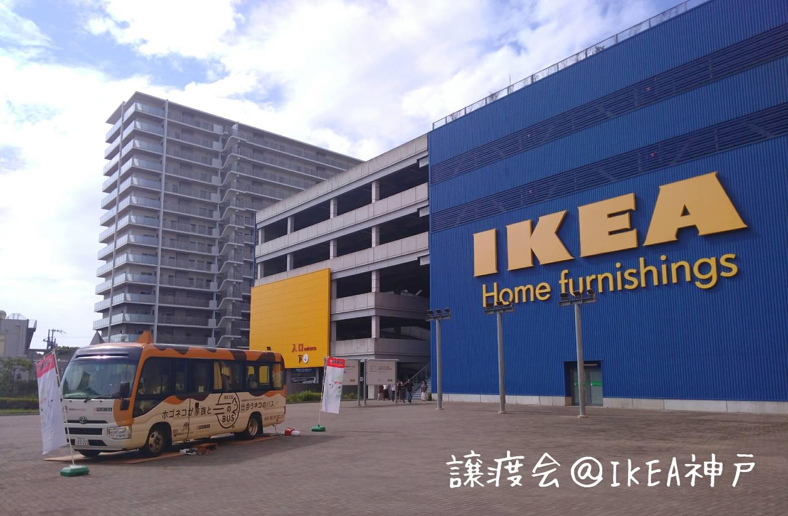 ネコバスIKEA神戸9月