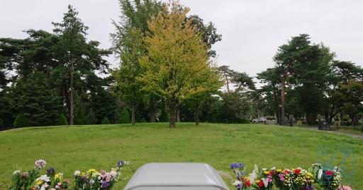 シンボルツリー2019年10月15日001