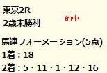 dr1123.jpg