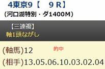 hm1027_1.jpg