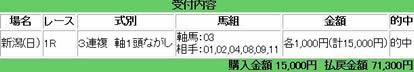 nigata1_1020_2.jpg