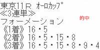 sy1110_1.jpg