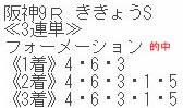 sy921_2.jpg