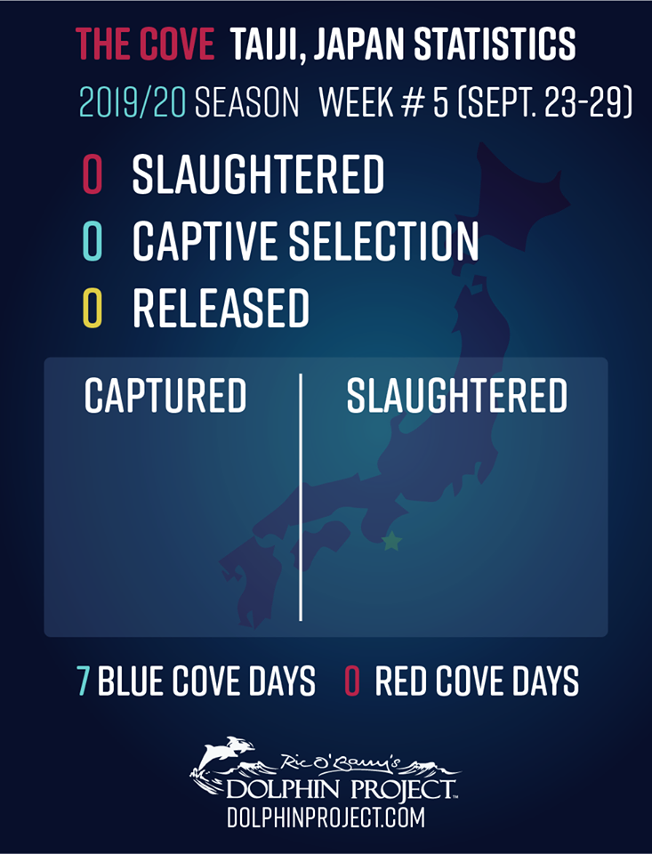 2019taiji5week.png