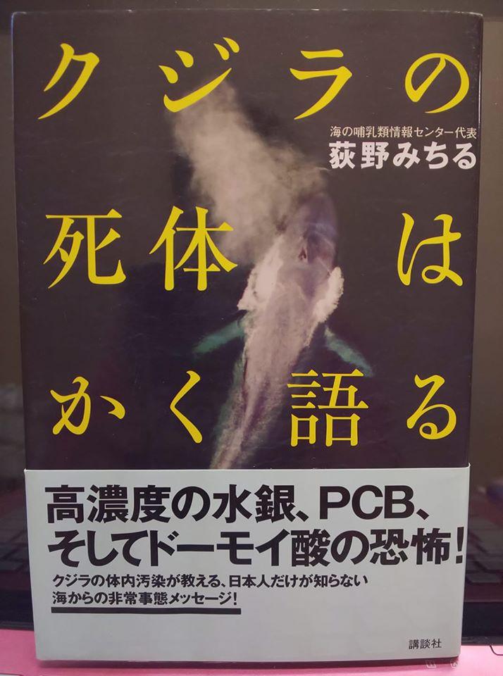 kujirayabai1.jpg