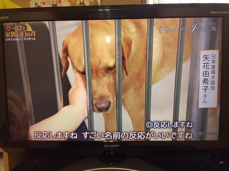 moudouken22.jpg