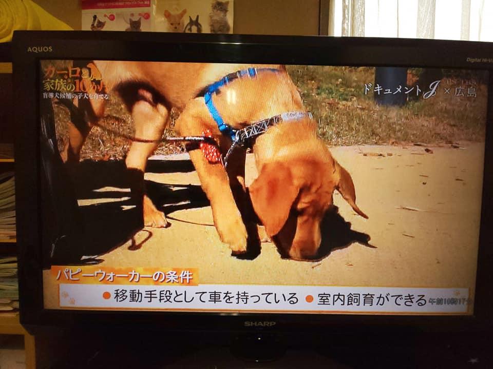 moudouken5.jpg