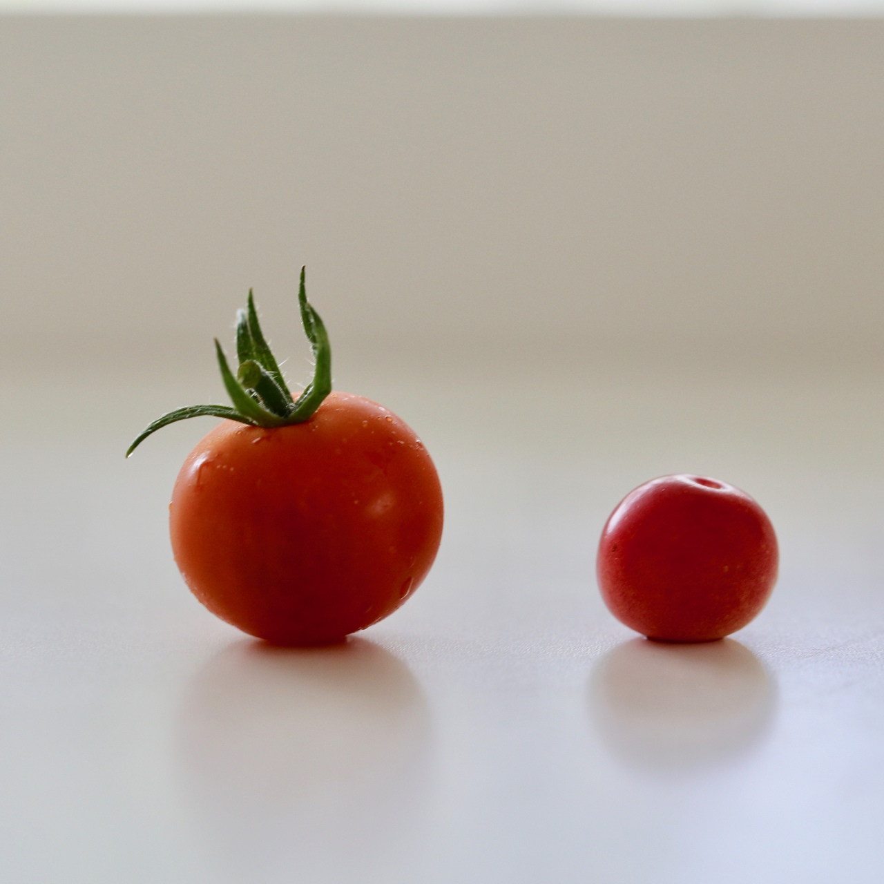 ミニトマトとピンクブルーベリー