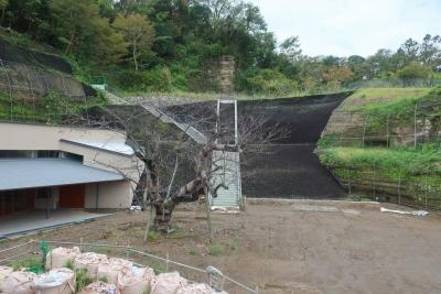 kanazawahakkei20191015 (4)