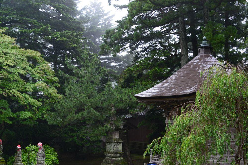 雨の寺-5