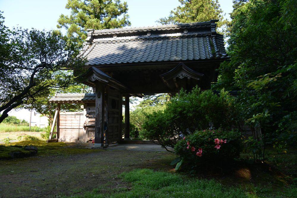 初夏の種月寺-3