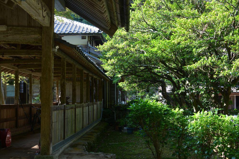 初夏の種月寺-5