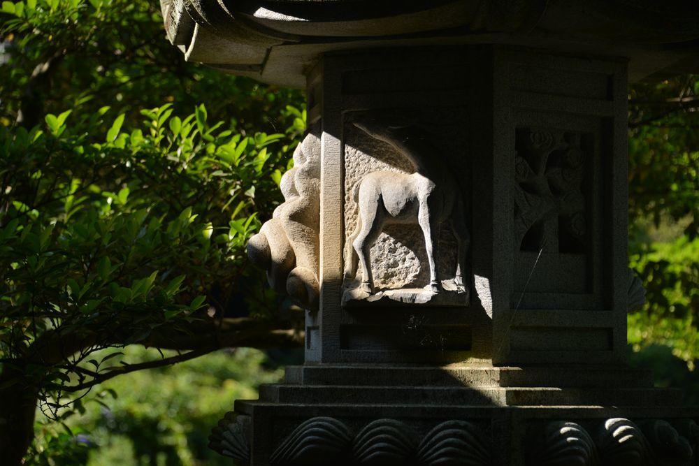 種月寺スナップー4
