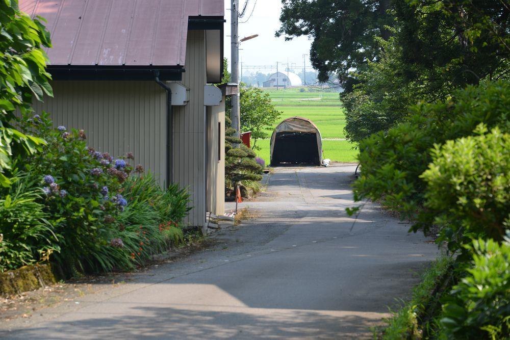 洞源寺と八海神社-7