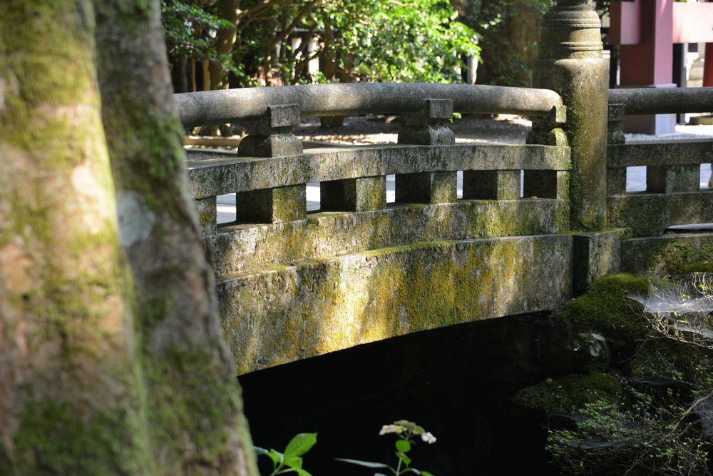 神社の日陰-6