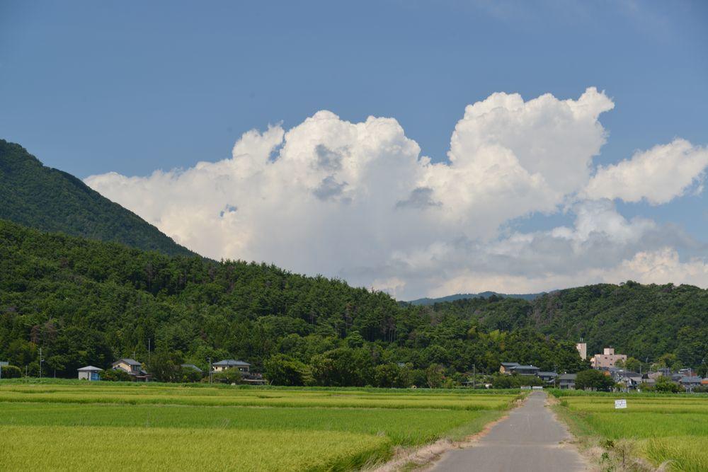 夏の雲-3