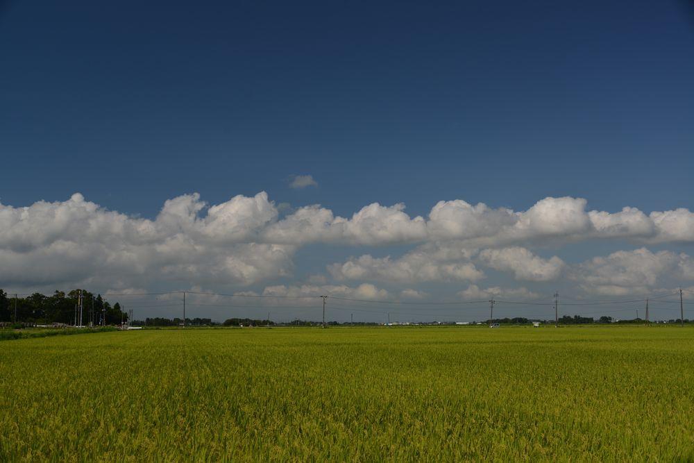 夏の雲-2