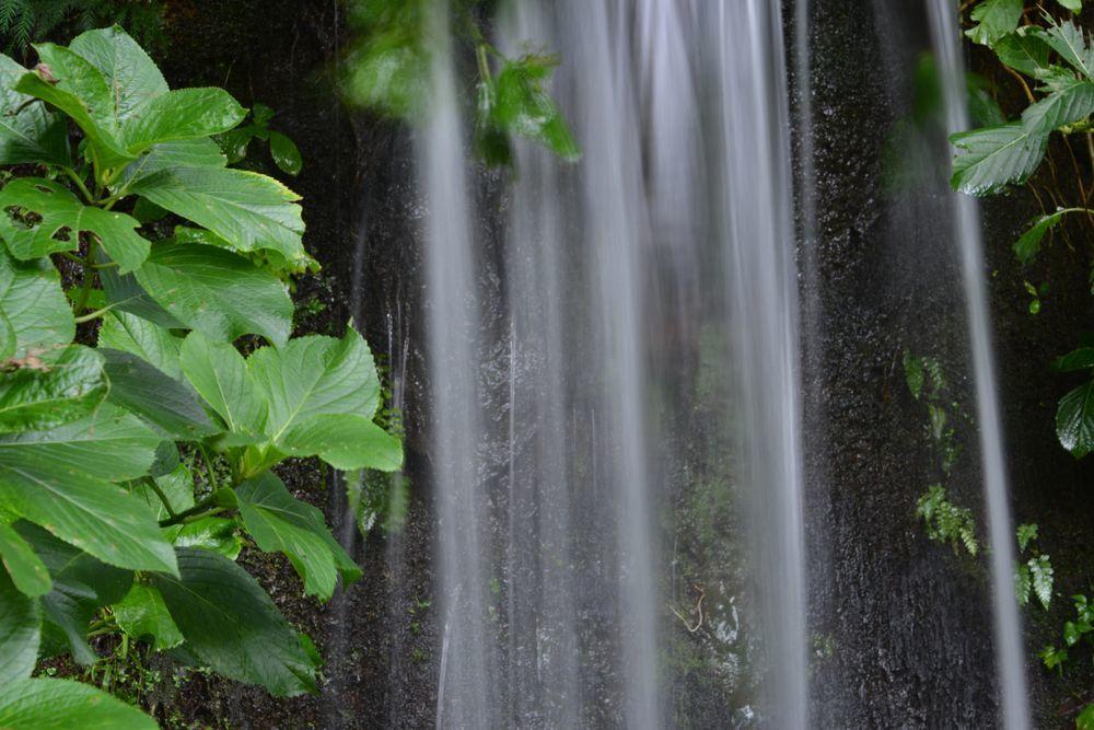 公園の滝-3