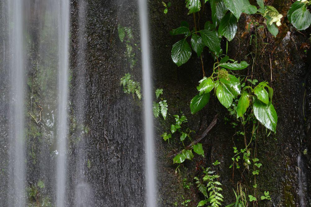 公園の滝-4