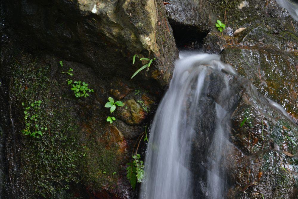 公園の滝-6