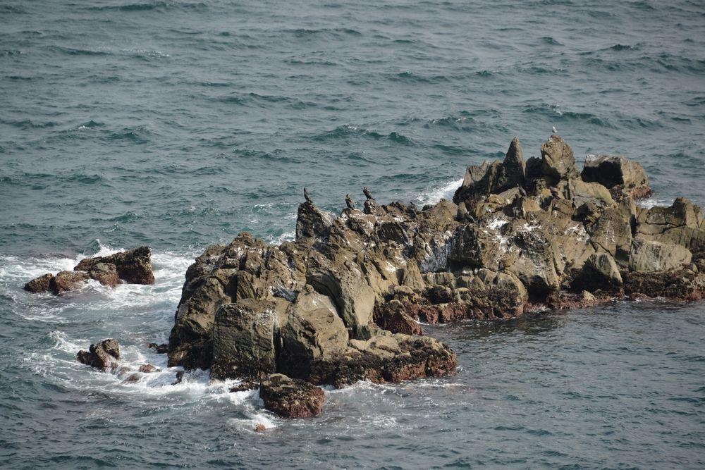 立待岬の岩場-5